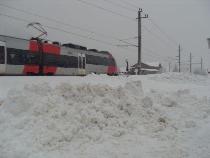 sdc13666
